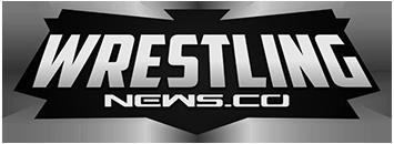 Wrestling News Logo