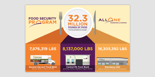 AllOne Foundation Infographics